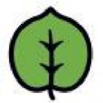 Cellulosic Biofuel
